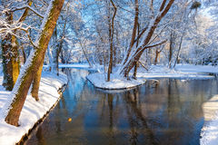 Winter park in Oliwa. Snow covered city park in a winter day. Oliwa, Poland Royalty Free Stock Image