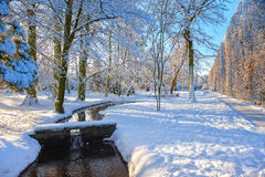 Winter park in Oliwa. Snow covered city park in a winter day. Oliwa, Poland Stock Image
