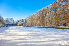 Winter park in Oliwa Royalty Free Stock Image