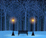 Winter park and outdoor landscape with bench, trees, streetlamps Stock Image