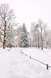 Winter park, Pavlovsk, Saint-Petersburg, Russia Royalty Free Stock Photo