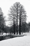 Winter in park Stock Photos