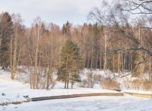 Day in a winter park. On the bank of a frozen river there is a bench and trees. The soft sun illuminates the scene stock photo
