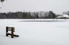 Winter Park Scene. A winter park scene with Canadian geese in a frozen pond and snow covered trees in the background Stock Images