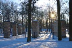Winter in park Stock Photo