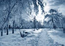 Winter park, scenery royalty free stock photography
