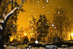 Winter park sight with faling snowflakes. Heavy snow in a park warmly light by public illumination, effect enhanced by low clouds and larfe snowflakes falling Stock Photos