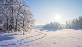 Winter park in snow. This is Winter park in snow Stock Photos