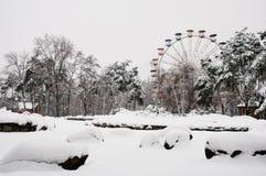 Winter park in snow. Kiev Royalty Free Stock Photos