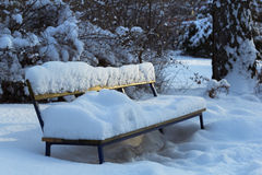 Winter park snow Royalty Free Stock Photos