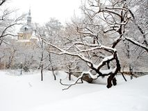 Winter park with snow covered mansion outdoor Stock Images