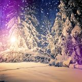 Winter park in snow. fantastic wintry landscape. frosty evening in city park. snow covered trees glowing in light lantern. Instagram filter. retro vintage Stock Photos