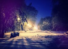 Winter park in snow. fantastic wintry landscape. frosty evening in city park. Snow covered trees glowing in light lantern. instagram filter. retro vintage Stock Image