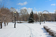 Winter park in snow. Stock Photo