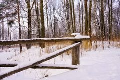 winter park snow trees beauty nature fence stock images