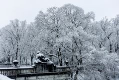 Winter in the park. Snowy frozen Trees with Old Statue lying on a balustrade in foreground royalty free stock photography