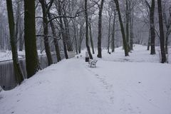 Winter in Park 13. Snowy winter in park. Little river and trees. White snow on grass. Light day Royalty Free Stock Photo