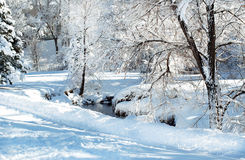 Winter park and stream Royalty Free Stock Image