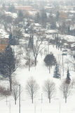 Winter park suburbs scene view with trees Stock Photos