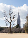 Winter park in Tokyo Stock Image
