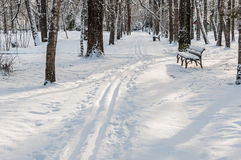 Winter park trail bench Royalty Free Stock Images