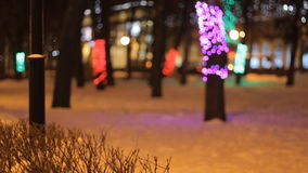 Winter park and trees decorated with Christmas garlands and lanterns. stock video footage