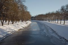 Winter Park with trees Royalty Free Stock Photography