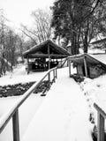 Winter passage Stock Photography