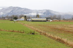 Winter Pasture. A farming pasture in winter in British Columbias Fraser Valley district Stock Images