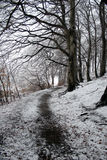 Winter path Stock Photos