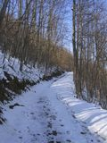 Winter path. Path covered snow in Serbia Royalty Free Stock Photography