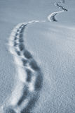 Winter path. Winter, evening, footprint Stock Image