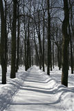 Winter path. In a park Stock Images