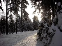 Winter path bend Royalty Free Stock Photo