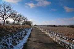 Winter path between field trees royalty free stock photo