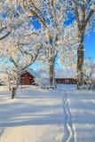 Winter path  through the garden. Path through the garden to the barn Royalty Free Stock Images