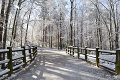 Winter path. Winter landscape with path which goes through the forest, wooden fence on the side of the road and trees covered in frost Royalty Free Stock Images