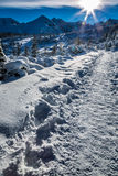 Winter path in the mountains at dawn Royalty Free Stock Photography