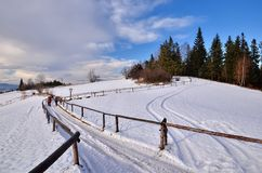 Winter path in mountains. Winter path for wood hut in mountains royalty free stock photos