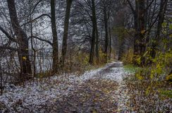 Winter path through old deciduous trees Royalty Free Stock Images