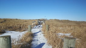 Winter path thru the dunes. Grand Barachois, New Brunswick, Acadian coast, saltwater marsh, snow packed path to the beach. Golden grasses, blue sky, white of Royalty Free Stock Images