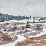 Winter Pathway on a Hill. Square landscape of a pathway starting up a  baron hill Royalty Free Stock Photos