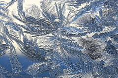 Winter pattern of ice crystals on glass Stock Image
