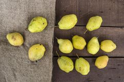 Free Winter Pear Pictures, Natural And Organic Winter Pear Pictures Stock Image - 105775181