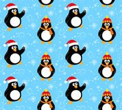 Winter penguin pattern Stock Photography