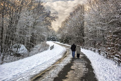 Into the winter. People walking on the street with snow Royalty Free Stock Photography