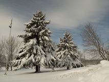 Winter. Photo taken in March 2018, this day was beautiful Royalty Free Stock Image