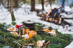 Free Winter Picnic In The Snow Near By Campfire. Christmas Garlands On Fir Branches Stock Images - 199291304