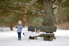 Winter picnic Royalty Free Stock Photography