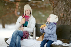 Winter picnic Stock Photography